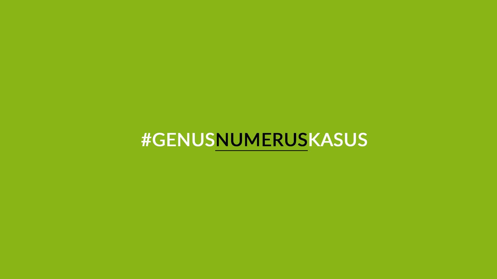 Sprachgeheimnisse: Numerus