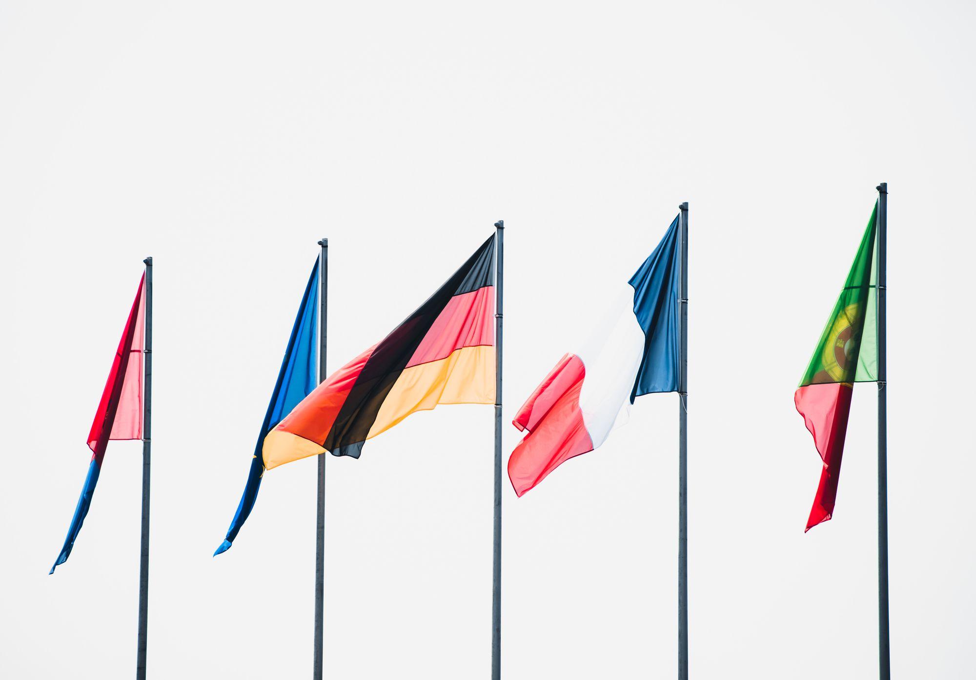 Sprachdiversität in der EU - Hindernis oder Gewinn?